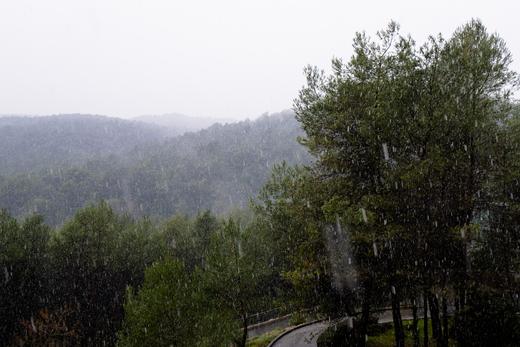 Śnieg w Sophii